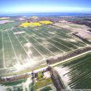 Luftbild 1